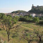 insitu-patrimoni-restauracio-itinerari-castello-de-farfanya-4