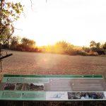 insitu-turisme-senyalitzacio-espais-naturals-torrefeta-florejacs--ruta-aigua-2